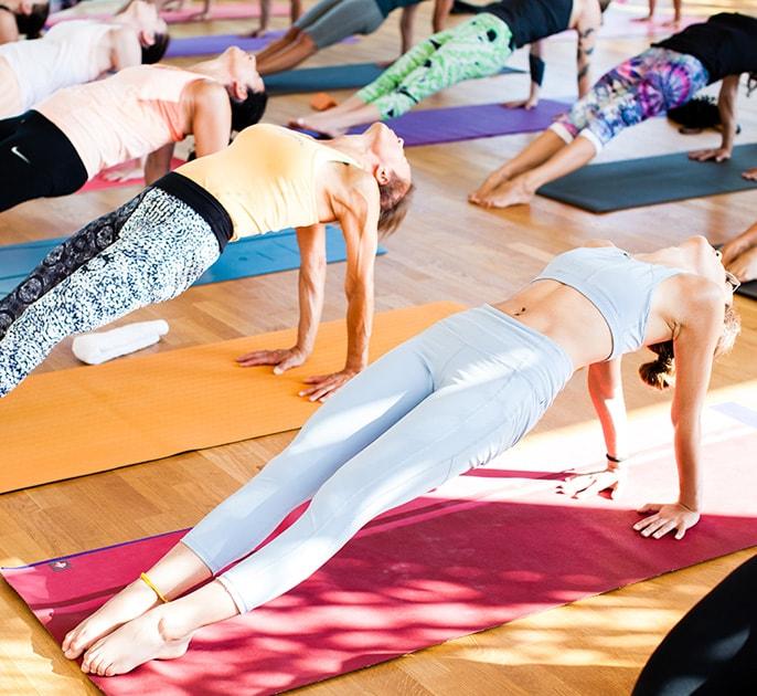 agricola samadhi yoga in salento agriturismo biologico zollino lecce