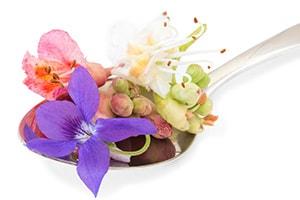 fiori di bach ayurveda trattamenti spa healing center