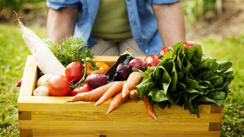 i prodotti a km 0 orto agricola samadhi